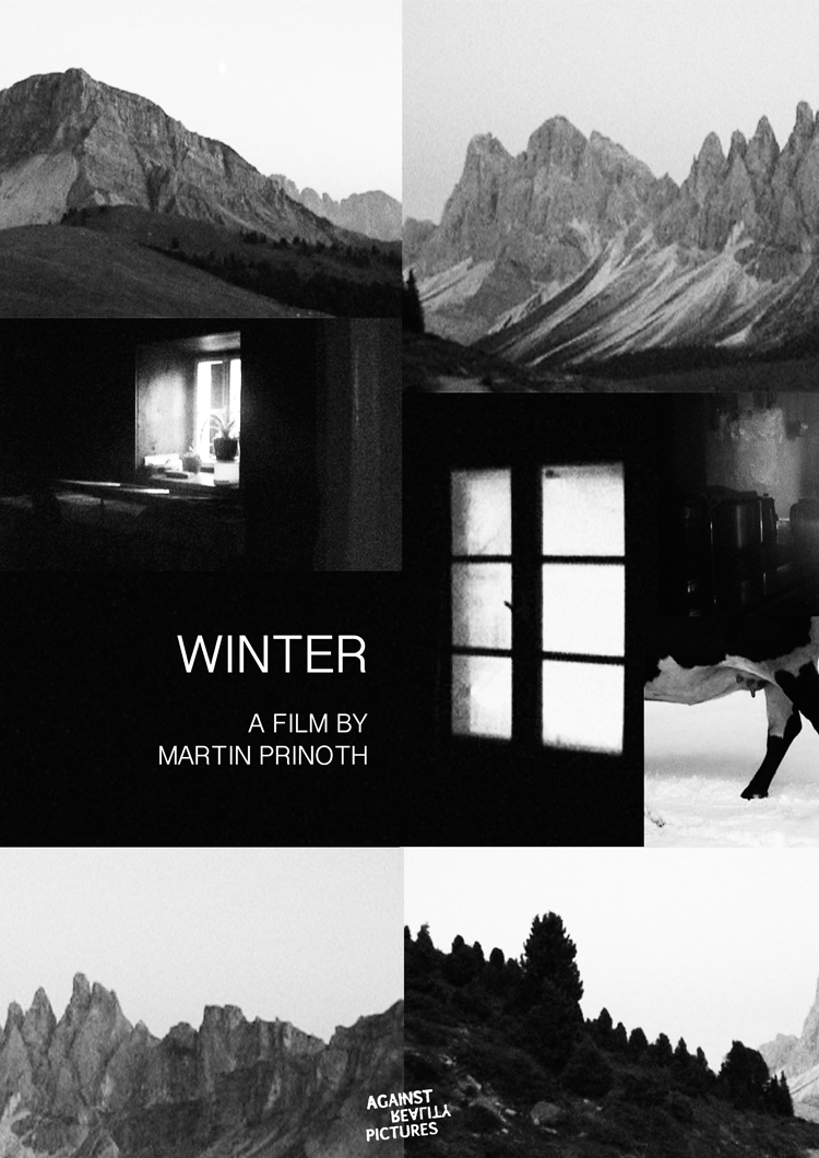 Winter Int. Poster